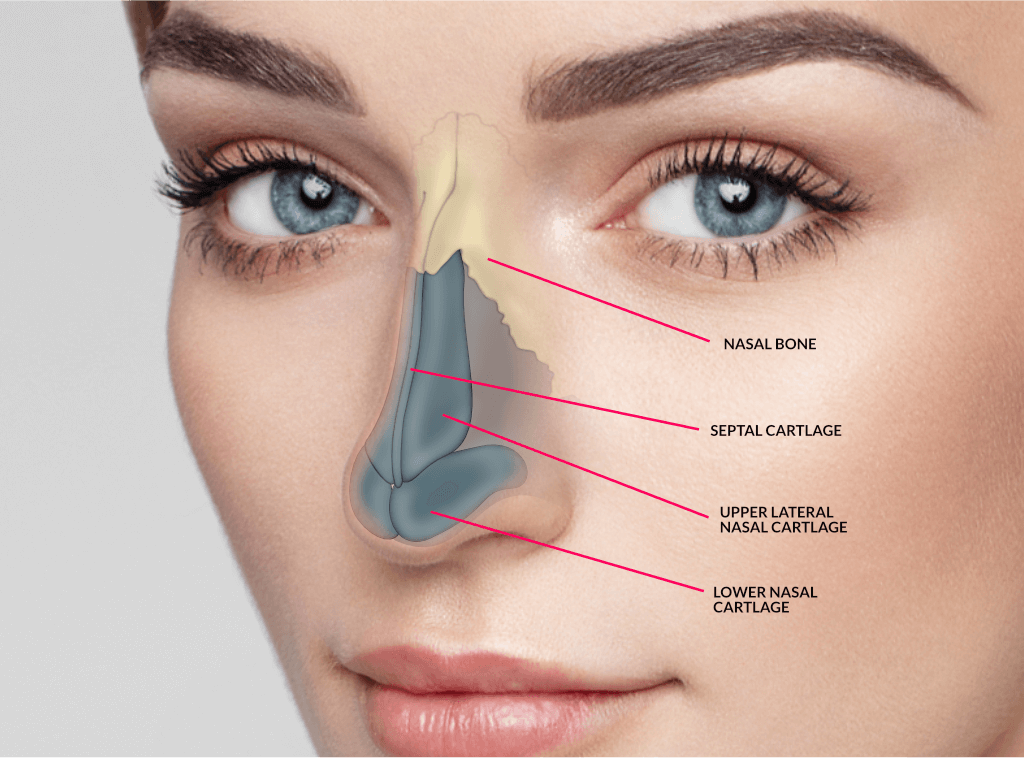 Know Your Options – Permanent Non Surgical Rhinoplasty